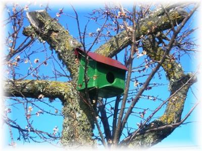 Turismo rural en salamanca casas rurales la nogala - Casas rurales en salamanca baratas ...
